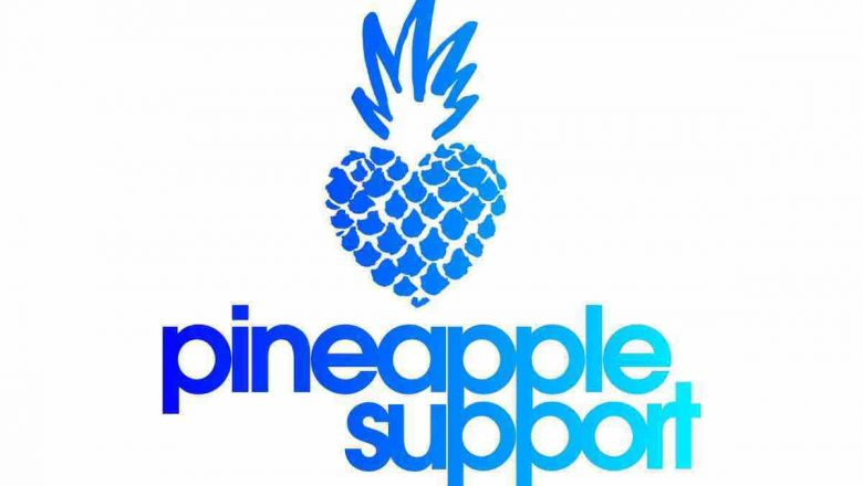 pineapple support logo